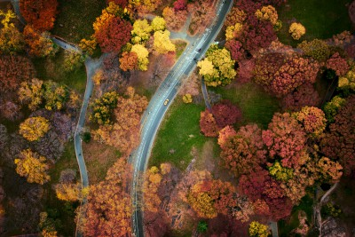 Jan Huetz Central Park 02
