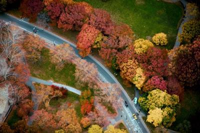 Jan Huetz Central Park 04