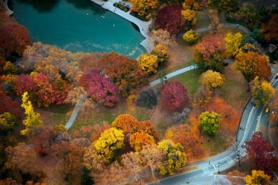 Jan Huetz Central Park 06
